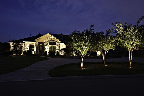 driveway tress lights