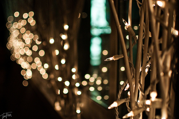 String Lights On Tree Branches : DIY: Simple Ways of Using Outdoor String Lights To Light a Deck Lights and Lights