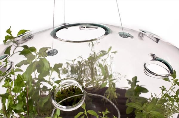 Glasshouse urban farming