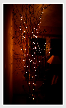 lighted twigs